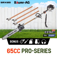 Baumr-AG 65CC Pole Chainsaw Petrol Chain Saw Brush Cutter Brushcutter Tree