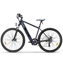 "36V 29"" Electric Bike - MXT by Nishiro"