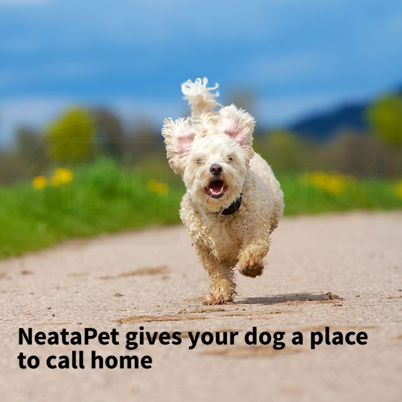 Pet House Dog Kennel by Neata Pet